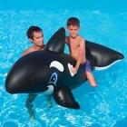 BESTWAY - Baleine flottante