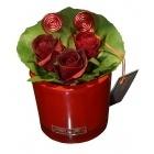 Roses rouges dans leur beau vase