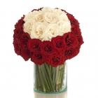 Neige Roses