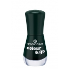 vernis a ongles colour & go 160