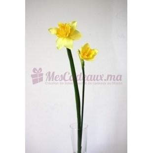 Daffodil Jaune (3 Pièces)