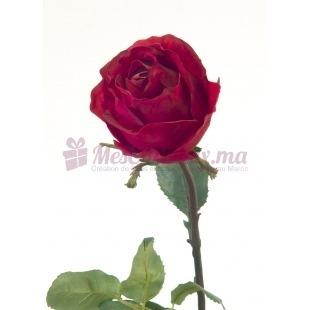 Rose Longue Rouge Foncé (2 Pièces)