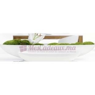 Coupe Blanc - ASA Selection