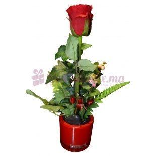 Rose avec fougère dans un beau Vase Rouge