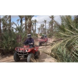Quad - Marrakech
