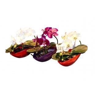 Vase Ovale Avec Orchidée Rouge - Daniele Roche