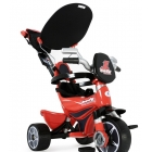 Le Porteur Tricycle Body