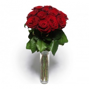 12 Roses Rouges