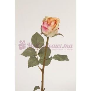 Rose Longue Jaune Orange (2 Pièces)