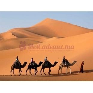 Incentives dans le desert