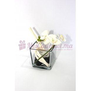 Orchidées Dans Un Vase Carré - Daniel Roche