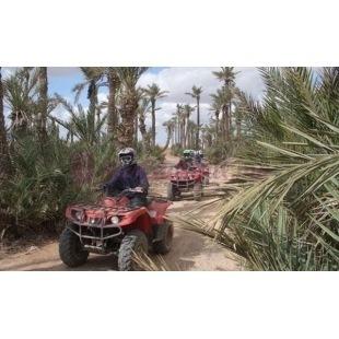 Quad - Marrakech